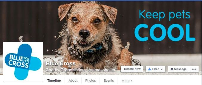 Blue Cross FB